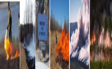 Images of prescribed burns